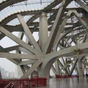 Pechino Watercube 4